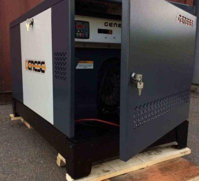 Бытовой газовый генератор Genese Standart Neva