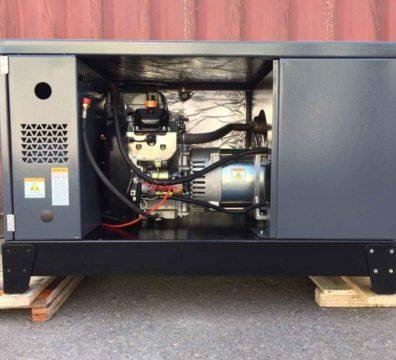 Промышленный газовый генератор Genese Neva Front 1